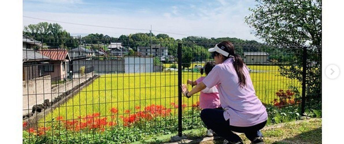 生駒市 保育園 いこいの家NRS 園庭遊び (その1)